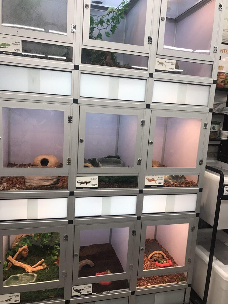 Pet Supermarket: 4700 Beechnut St, Houston, TX
