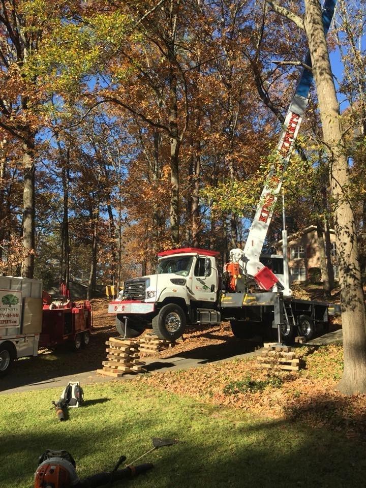 King Tree Experts: 1687 Rock Cut Rd, Conley, GA