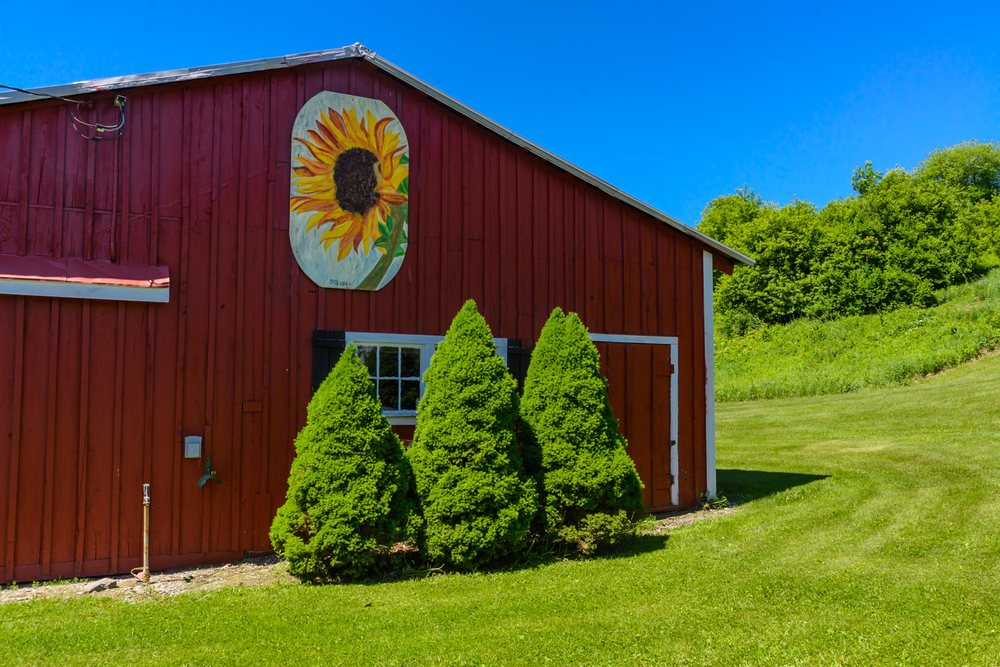 Fieldstone Farm Resort: 201 Roses Hill Rd, Richfield Springs, NY