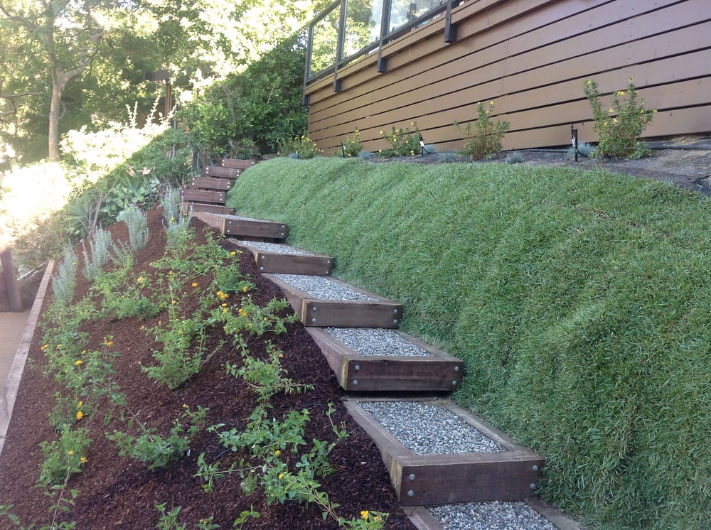 California natives mulch drought tolerant steps - Ideas for hillside landscape ...