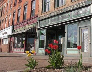 Dogwood Trading Company: 176 Main St, Dansville, NY