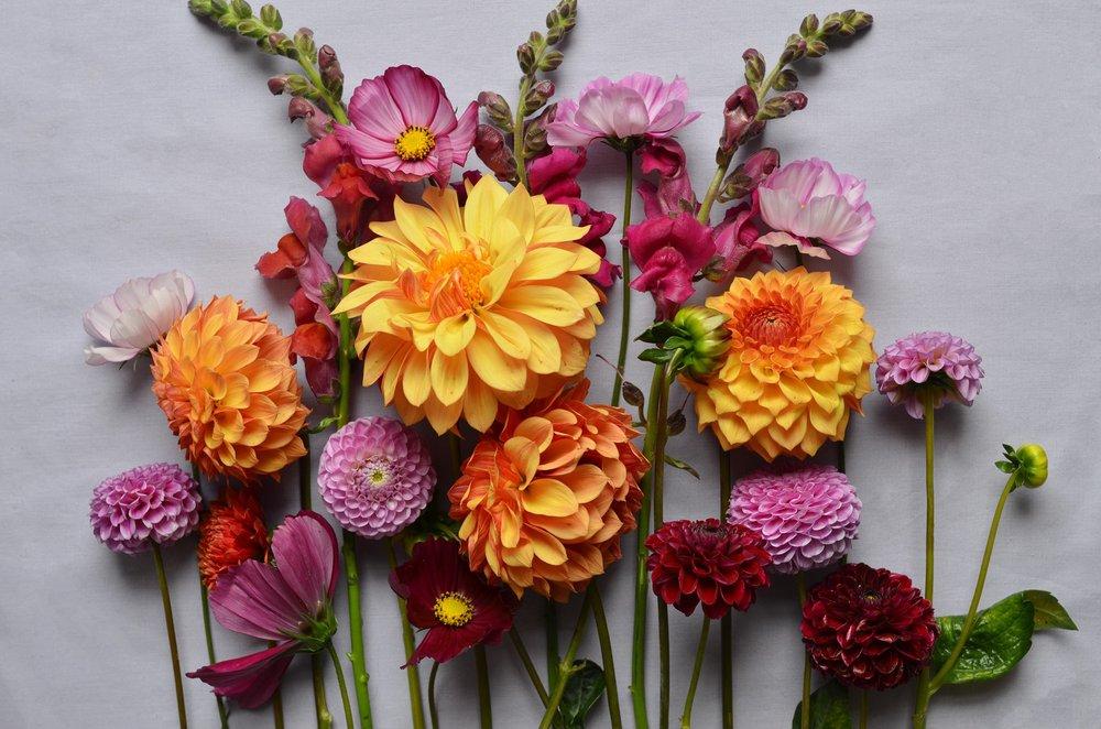 Terri's Flower Shop: 174 Church St, Naugatuck, CT