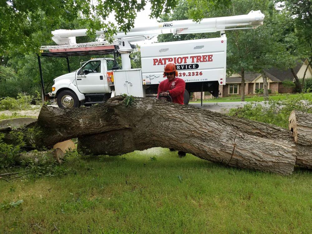 Patriot Tree Service: 548 Freestone Dr, Allen, TX