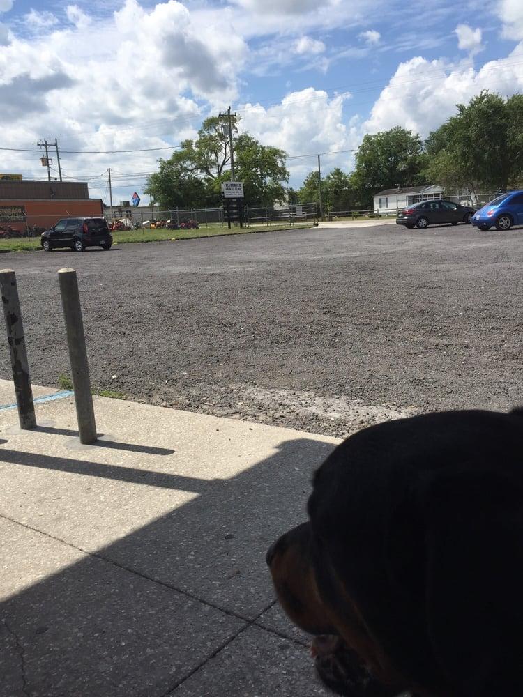 Maverick Animal Clinic: 404 Madison Ave, Orange Park, FL
