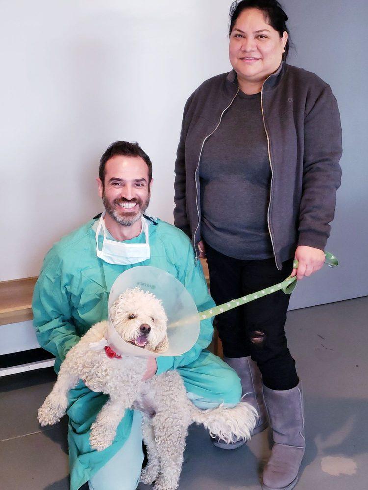 Los Angeles Veterinary Center