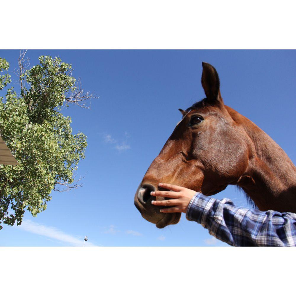 Aubrey Park Equestrian Center