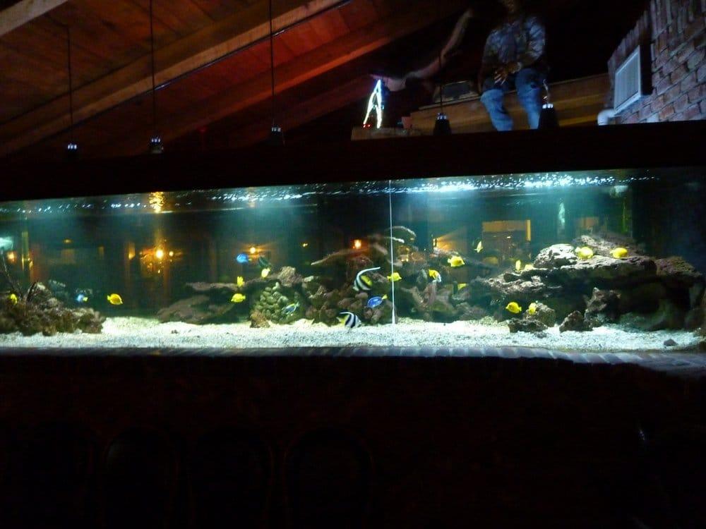 Bar fish tank yelp for Fish tank bar
