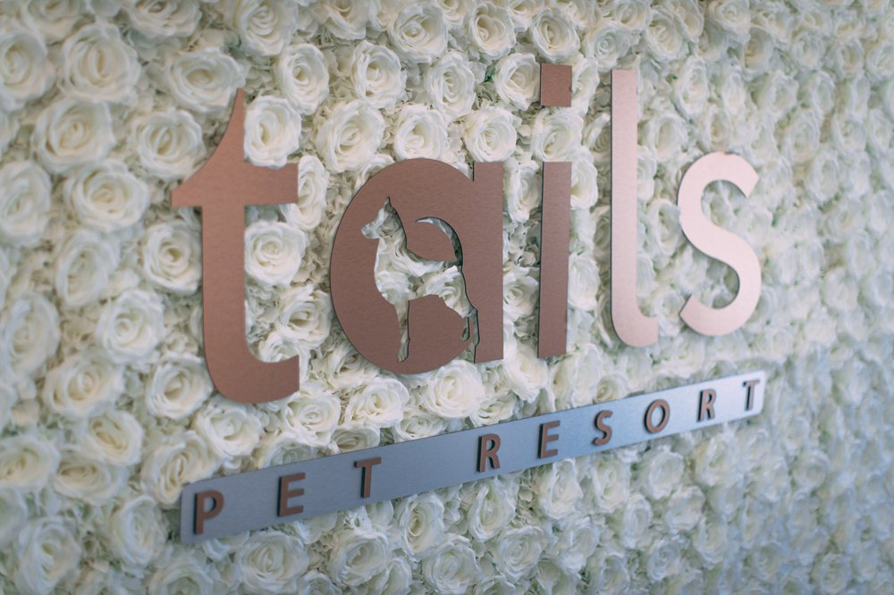 Tails Pet Resort