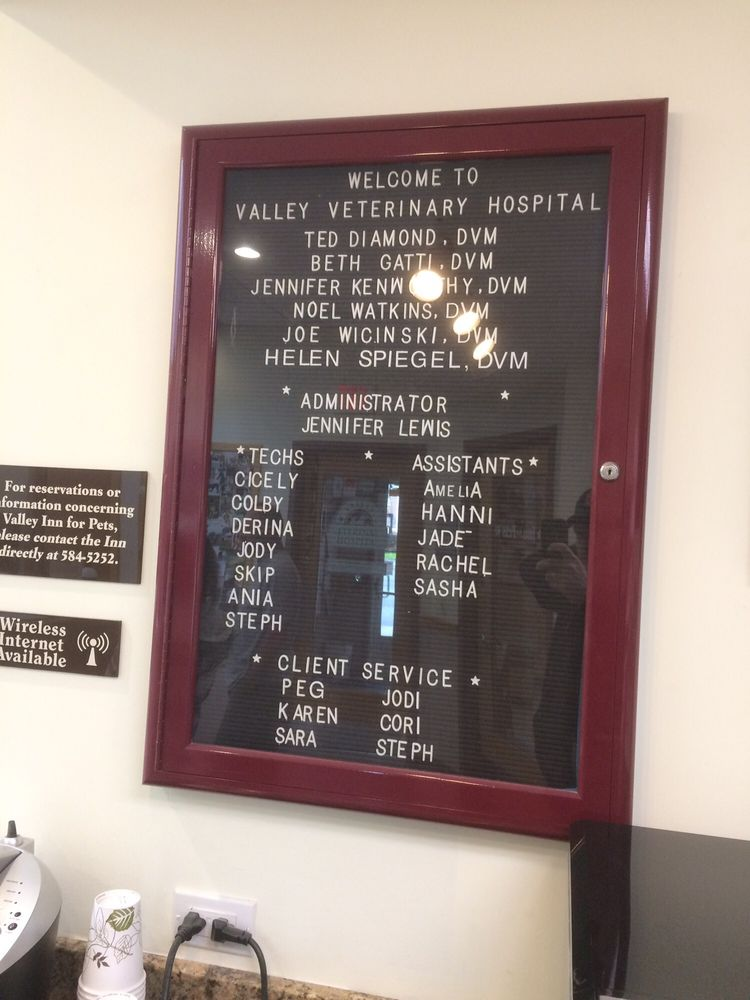 Valley Veterinary Hospital: 320 Russell St, Hadley, MA