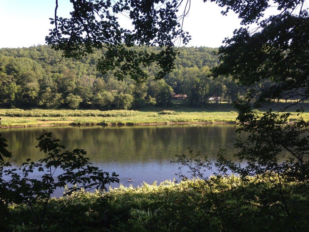 Lander's Campgrounds: 69 De Mauro Ln, Narrowsburg, NY