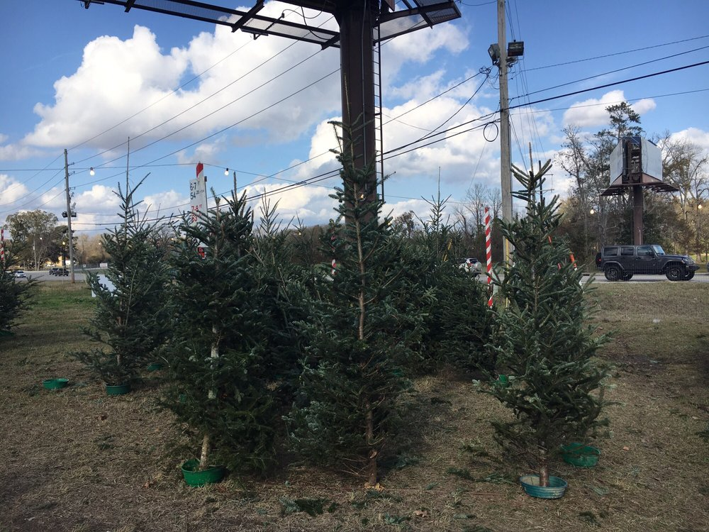 A's Christmas Trees: 9580 Perkins Rd, Baton Rouge, LA