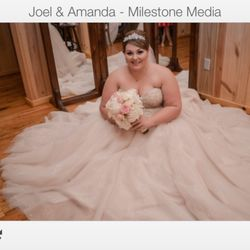 Top 10 Best Plus Size Wedding Dress in Dallas, TX - Last ...