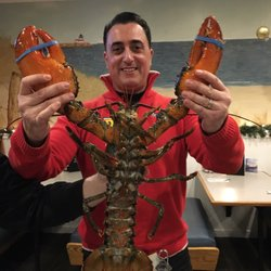 Foto di Lobster Tail - Windham, NH, Stati Uniti. This is what a 5 lbs ...