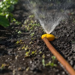 Dave S Sprinkler Repair Irrigation 27565 Lime St