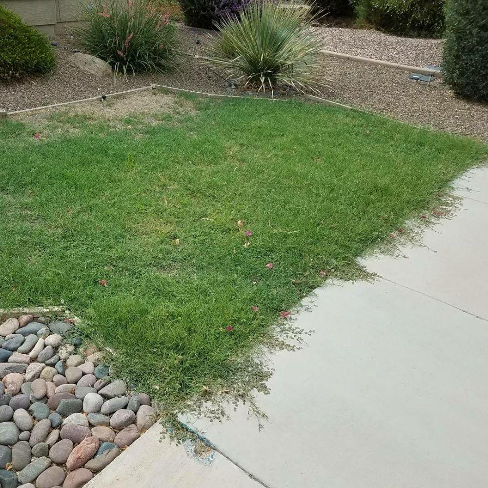 Right Choice Lawn Service: 45020 W Pablo Ave, Maricopa, AZ
