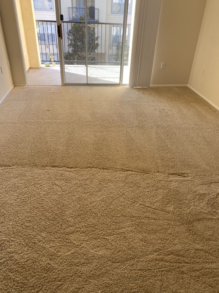 Dr. Carpet