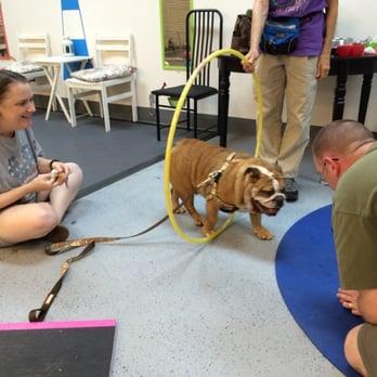 Whole Dog Training Closed 20 Photos Amp 14 Reviews Pet