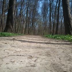 Fahrradtour Berechnen : fahrradtour im auenwald lokales leipzig sachsen yelp ~ Themetempest.com Abrechnung