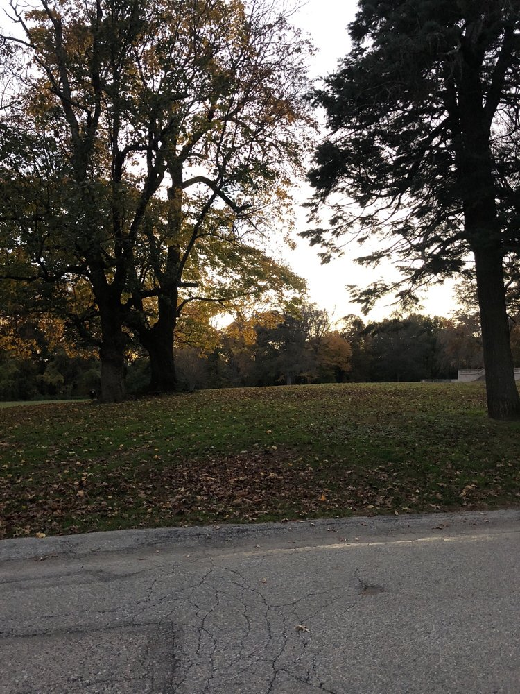 Curtis Hall Dog Park