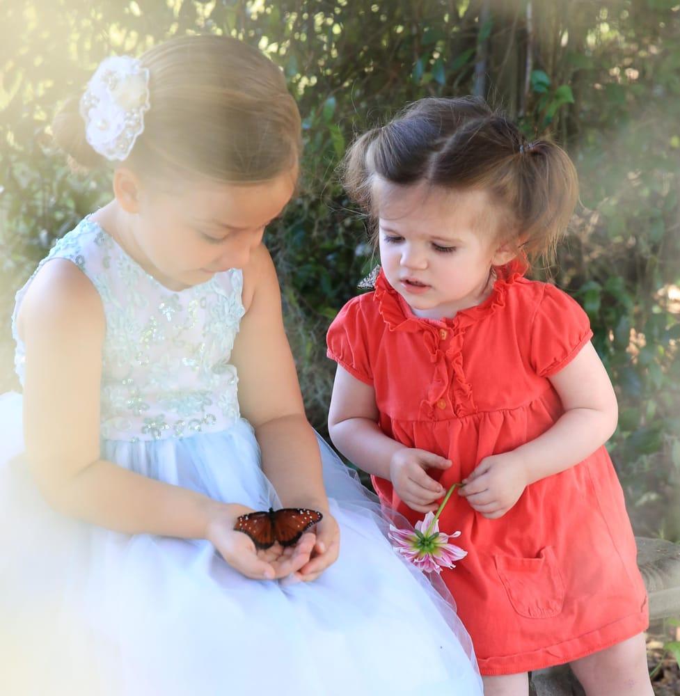 Shady Oak Nursery: 12876 SW County Rd 231, Brooker, FL