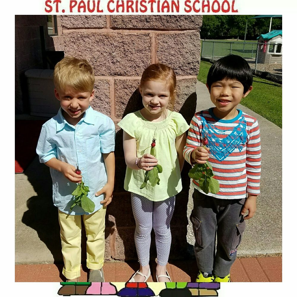St Paul Christian School: 6565 Independence Pkwy, Plano, TX