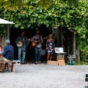 Wineries on long island with live music