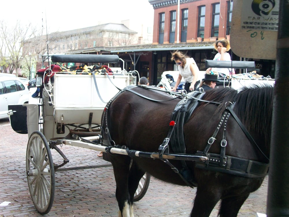 Mj Carriage Service