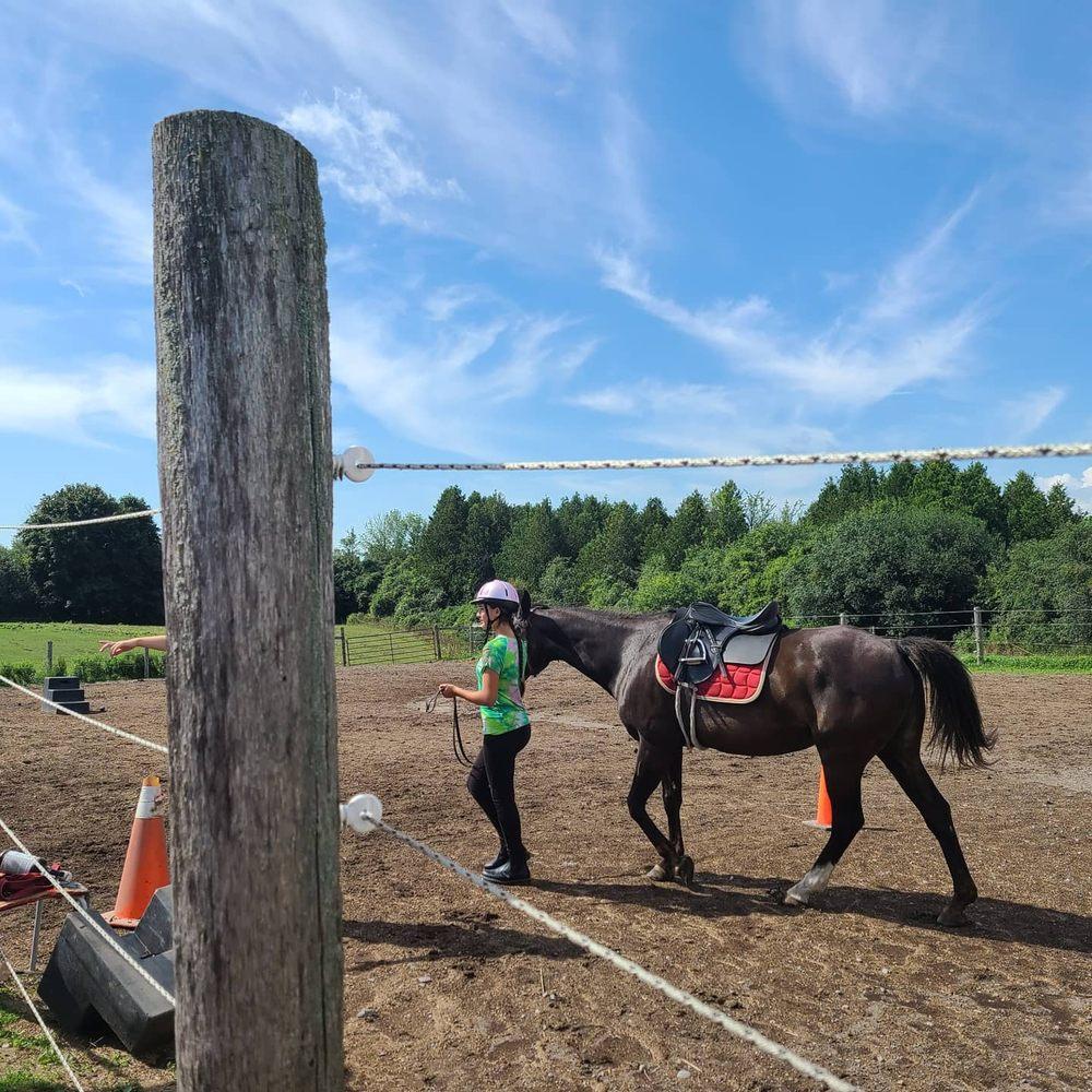 Heartland Equestrian Center Inc.: 12139 Moreno Ave, Lakeside, CA