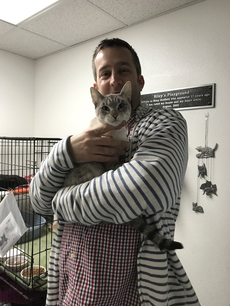 spcaLA South Bay Pet Adoption Center