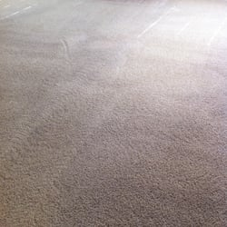 Photo Of Brightway Carpet Cleaning Katy Tx United States Forgot To Take