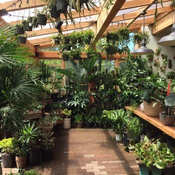 Photo Of Pistils Nursery Portland Or United States The Outdoor Greenhouse