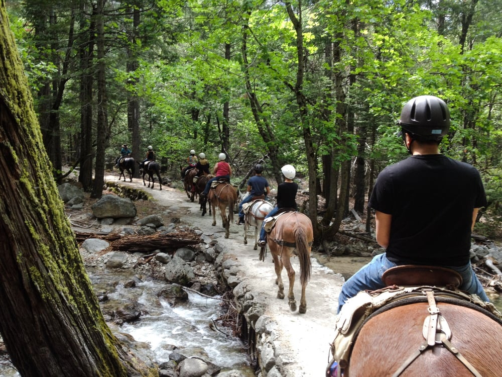 Yosemite valley stable closed 10 photos 11 reviews for Where can i go horseback riding near me