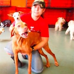 Happy hounds dog care center 21 photos 25 reviews pet groomers photo of happy hounds dog care center longmont co united states solutioingenieria Images