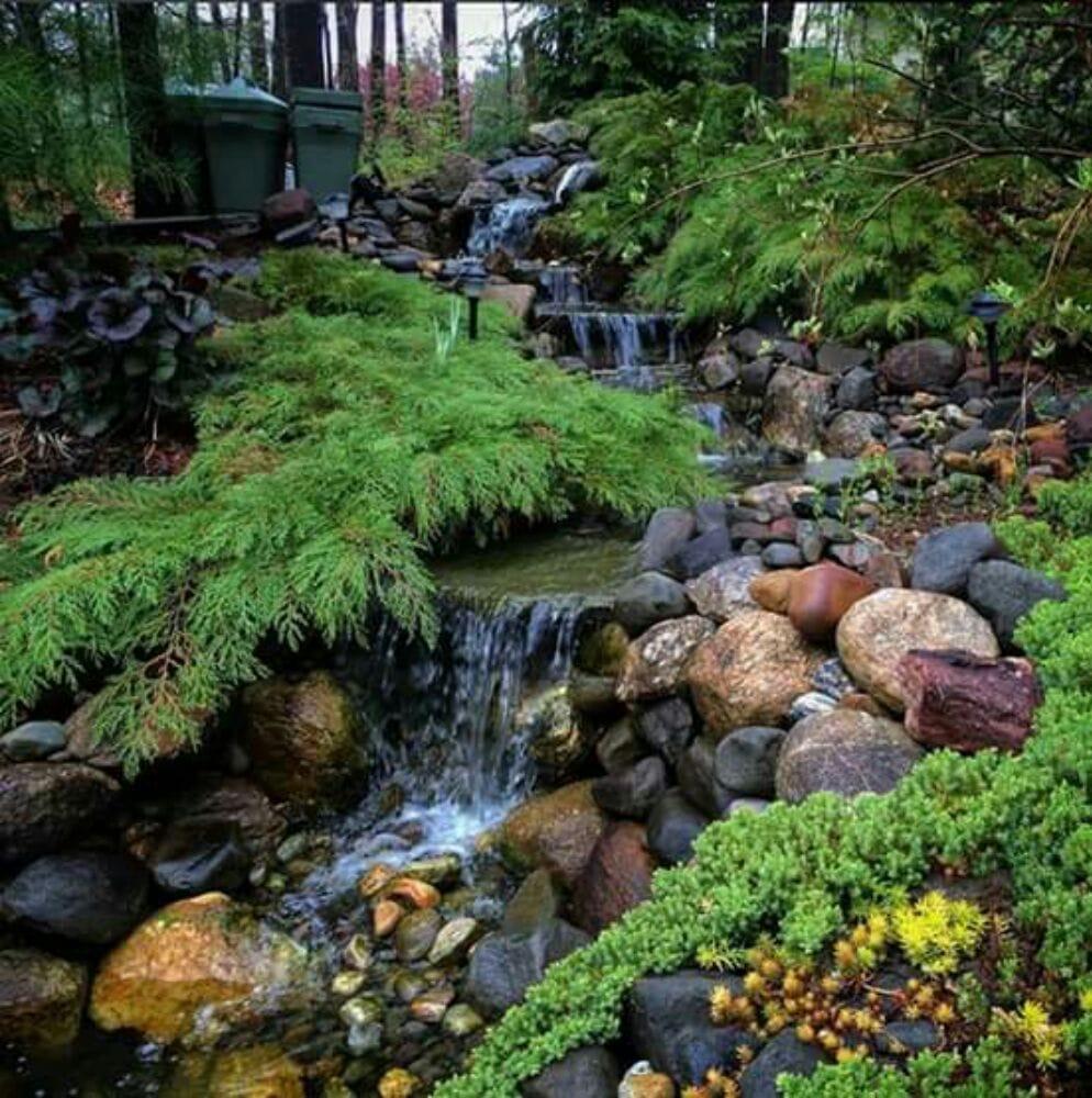 Aquatic Landscaping & Outdoor Design - 51 Photos - Landscape ...