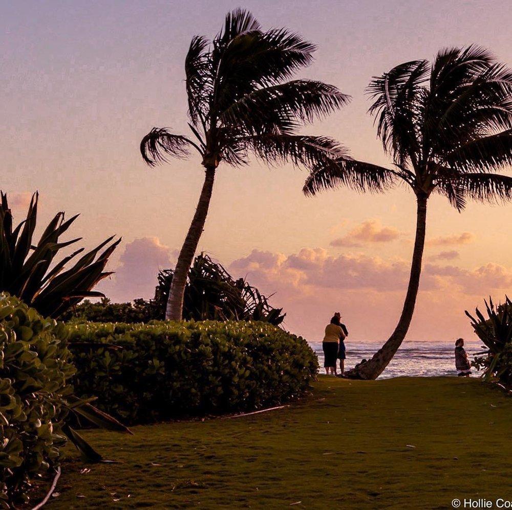 Pāola Wellness Hale: 55400 Kamehameha Hwy, Laie, HI