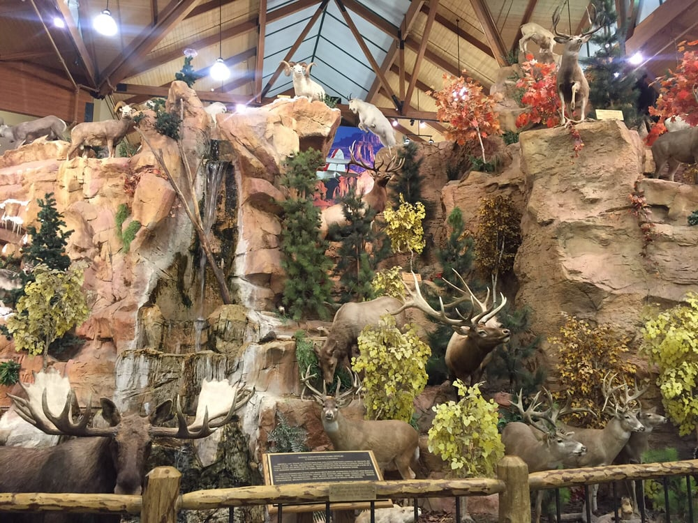 Cabela s 149 photos sporting goods glendale az for Az game and fish phone number