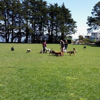 Friends Of Upper Douglass Dog Park