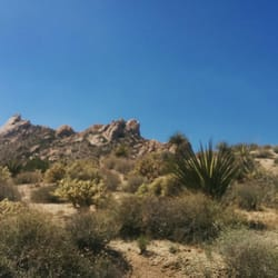 The Best 10 Hiking In Bullhead City Az Last Updated May 2019 Yelp