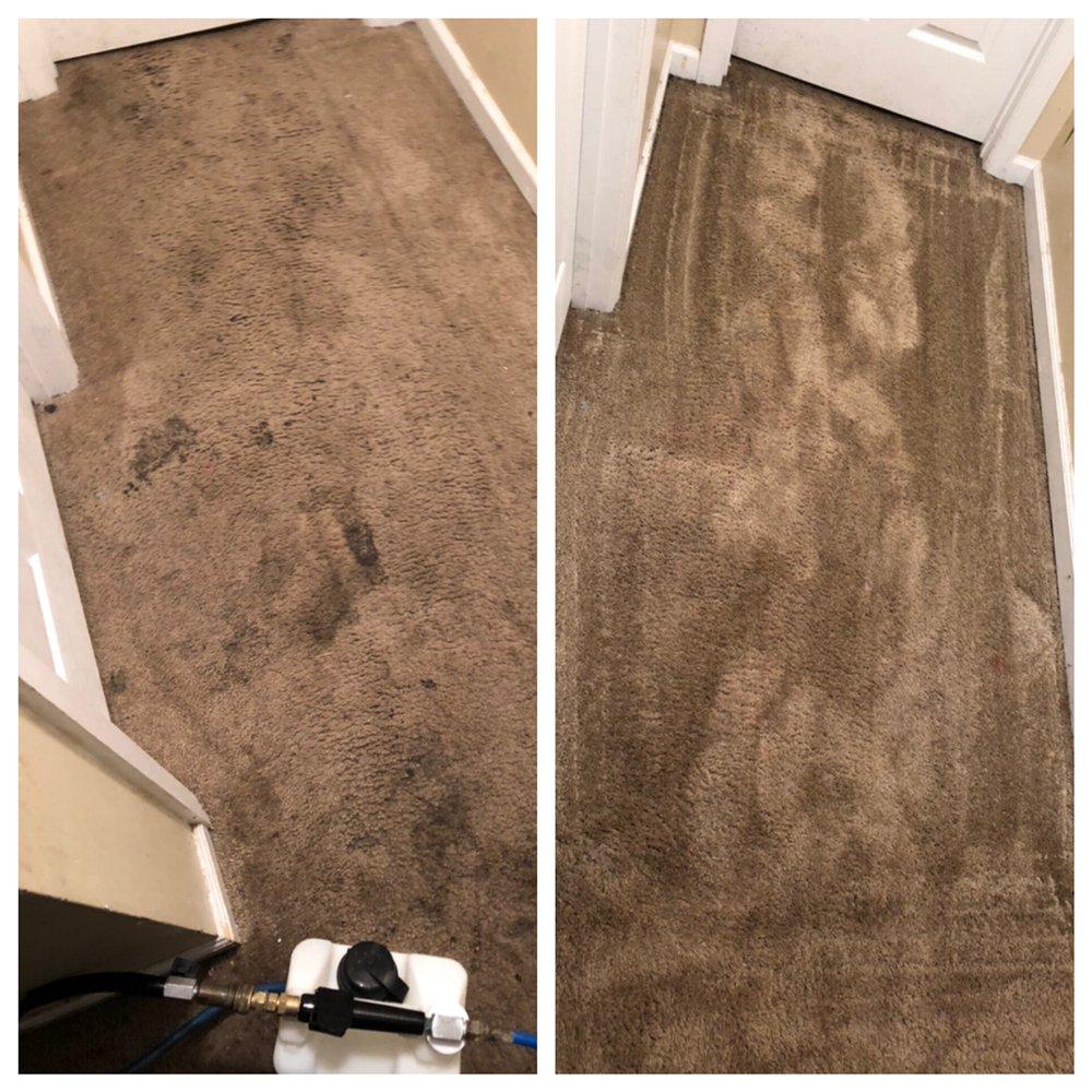 Carpet Genie: Beulaville, NC