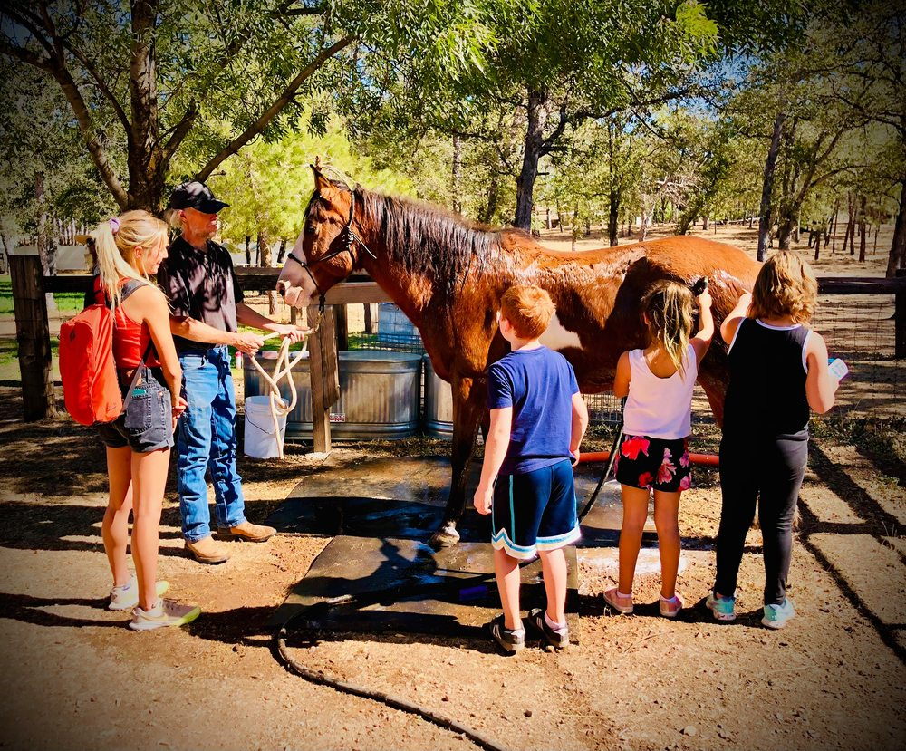 Roughout Ranch Foundation: 21449 Roughout Rd, Redding, CA