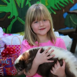 Photo Of Sarasota Jungle Gardens   Sarasota, FL, United States. Birthday  Parties With
