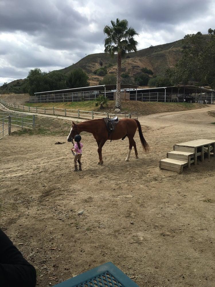 Sycamore Canyon Equestrian Center 11 Photos Horse