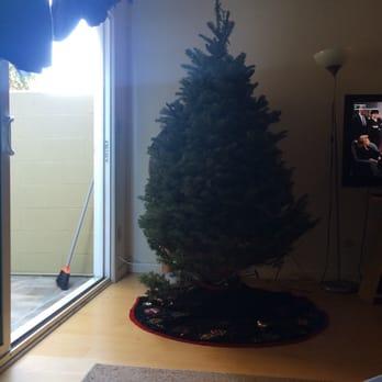 Photo of Mr. Jingles Christmas Trees - San Diego, CA, United States. - Mr. Jingles Christmas Trees - CLOSED - Christmas Trees - 2665 5th