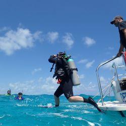 147d508cdd Sail Fish Scuba - 329 Photos & 87 Reviews - Scuba Diving - 103100 Overseas  Hwy, Key Largo, FL - Phone Number - Yelp