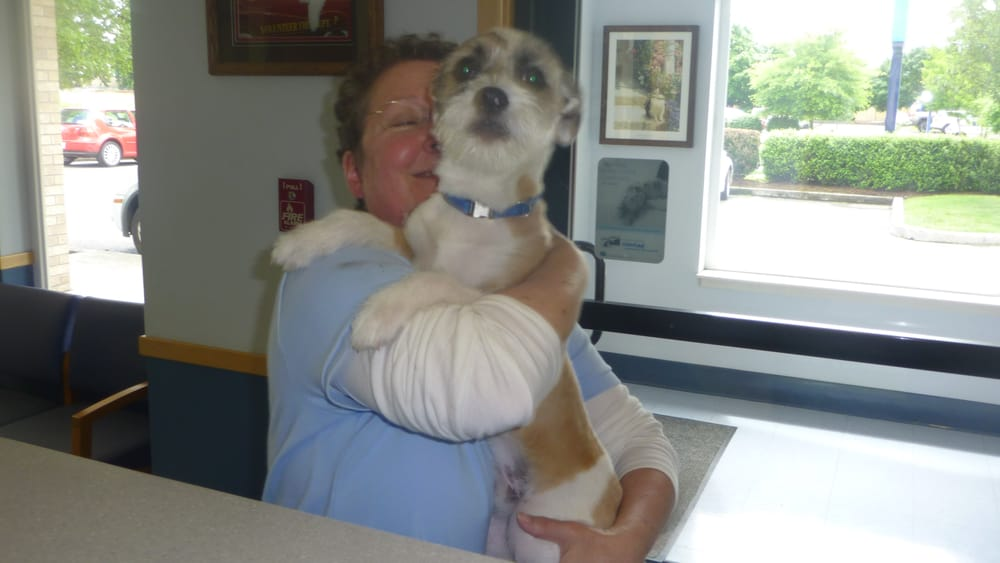 St Francis 24hr Animal Hospital | 12010 NE 65th Street, Vancouver, WA, 98682 | +1 (360) 253-5446