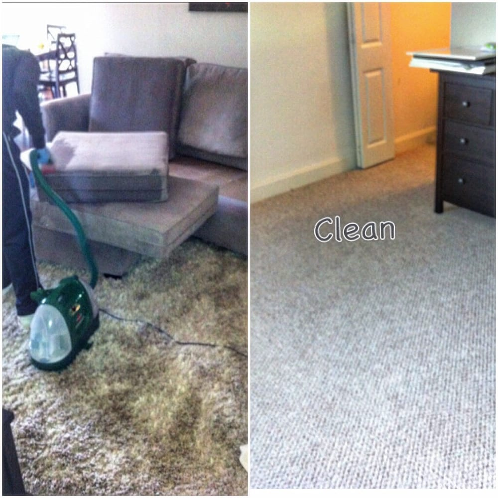 Carpet Rug Couch Clean Fresh The Price