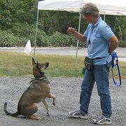 Doggone Leash Dog Training