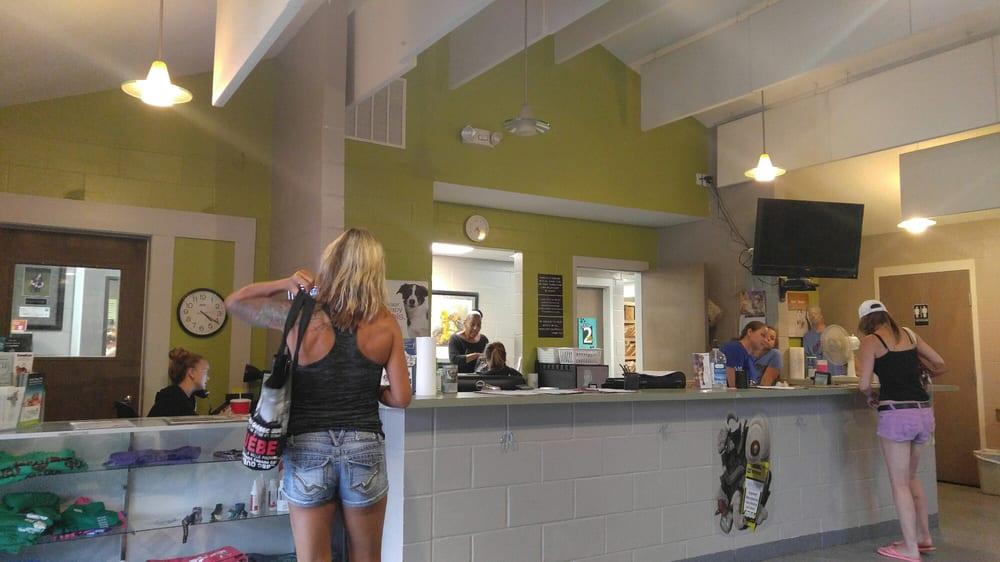 Clay County Animal Hospital: 332 Parkridge Ave, Orange Park, FL