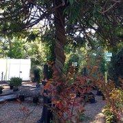 ... Photo Of Smithfield Gardens   Suffolk, VA, United States ...