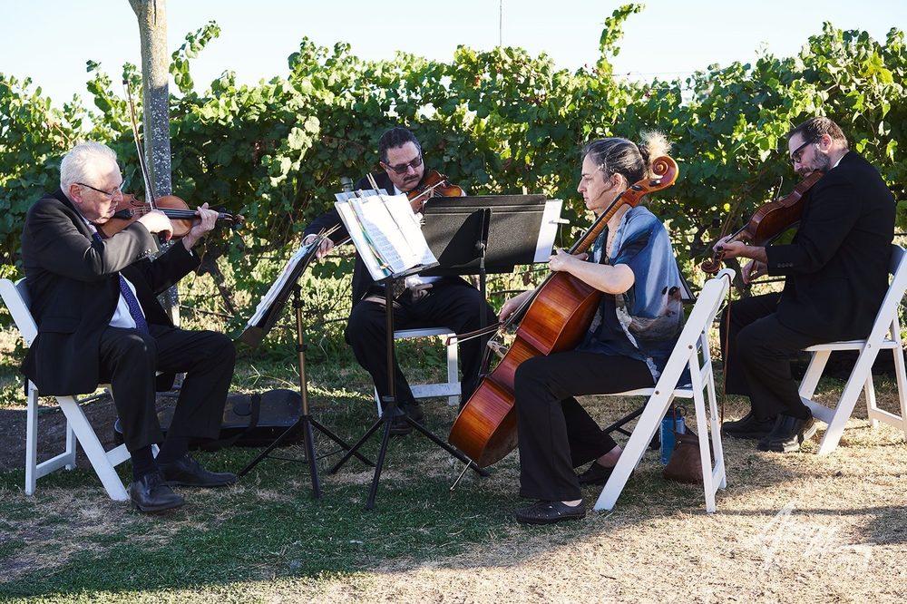 Social Spots from Katrina Wreede Musical Groups